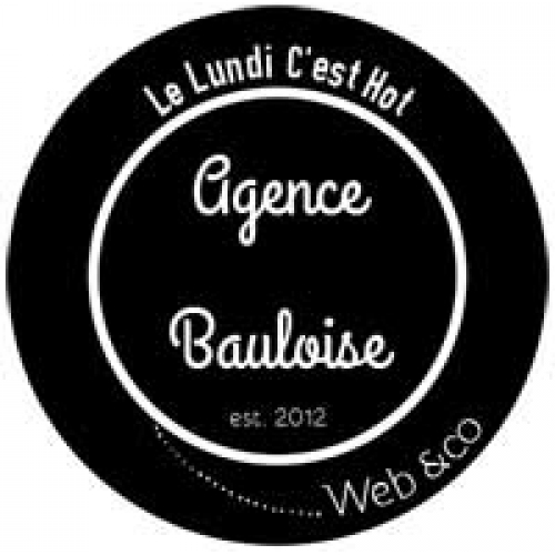Logo Web Agency La Baule France